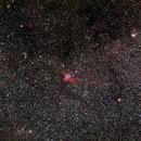 NGC 7380 - Wizard Nebula - wide field,                                AC1000