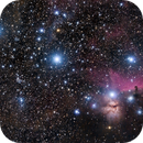 Orion Belt - Flame & Horse Head Nebua,                                CarlosAraya