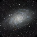 M33, the Pinwheel Galaxy in Triangulum,                                Francesco Meschia
