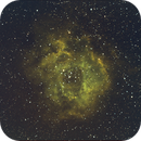 Rosette Nebula,                                Hilmi Al-Kindy