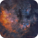 NGC 7822,                                Sean Molony