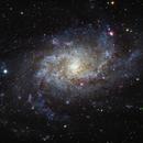 M33 Triangulum Galaxy,                                Ryan Kinnett