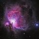 M42 - The Great Orion Nebula,                                Bryan He