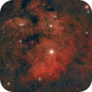 NGC 7822,                                francopanetta