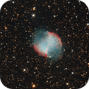 M 27 - 20.11.2020,                                Martin Luther