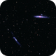 NGC 4631 - The Whale,                                Jim Matzger