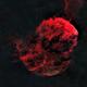 Starless IC443 -HRGB,                                Charles Duarte