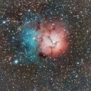 The Trifid Nebula,                                Sean Smith