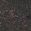 Elephant's trunk nebula IC1396,                                Antanas Paulauskas