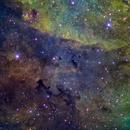 Clouds in Cygnus ,                                Juan Lozano