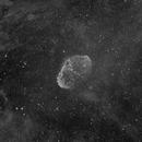 The Crescent Nebula in Halpha,                                Gabe Shaughnessy