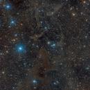 Lynds Bright Nebula 552,                                Miles Zhou