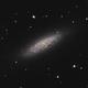 NGC 6503,                                Gary Imm