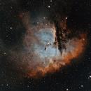 NGC 281 - Pacman Nebula,                                Steven Marx