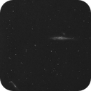 Whale Galaxy,                                Rino