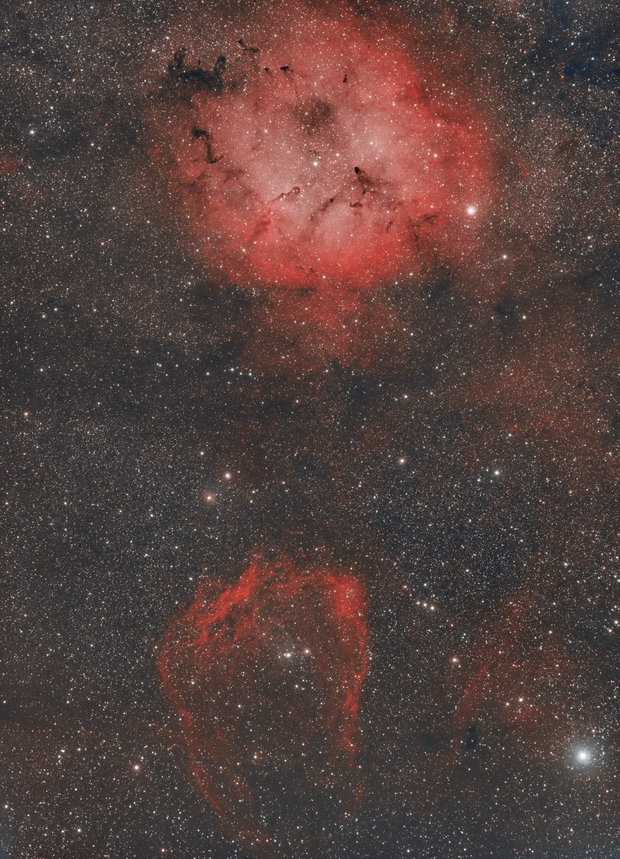 From the elephant trunk to the bat and a hint of Outters 4 (IC1396, SH2-129, OU-4, VDB-140),                                Sven Hoffmann