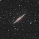 NGC891,                                seasonzhang813