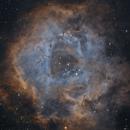 NGC 2244 Rosette Nebula,                                Rolandas_S