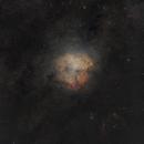 IC 1396 Wide Field,                                Luke Arens