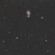 Whirlpool Galaxy M51,                                Enrico