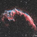 NGC 6995 Eastern Veil,                                PixelSkies (David...