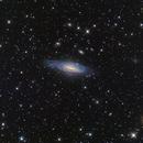 NGC 7331, 9/21/2020,                                Mike Carroll