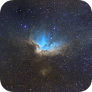 The Wizard Nebula (NGC 7380) in Hubble Palette,                                Will Czaja