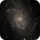 M33 - Triangulum Galaxy,                                Burk Young