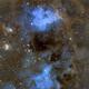 Tadpoles Nebula/IC 410/Redo,                                John Kroon