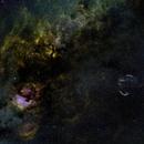 Cygnus in Narrowband,                                Doug Gray