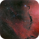 Seahorse in Ophiuchus (SH2-27, LDN 240, LDN 207, LDN 146 and more),                                Adam Block