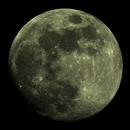 Mond 2017-04-09,                                Bruno
