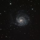M 101 - Feuerradgalaxie,                                Oliver_Schulz