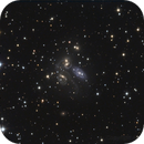 NGC 7317 - NGC 7318a - 7318b NGC - NGC 7319 - NGC 7320 - Stephan Quintett,                                Alberto Tomatis