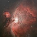 M42 - The Great Orion Nebula,                                Timothy Martin & Nic Patridge