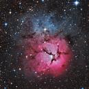 M20.  The Trifid Nebula,                                Chris Parfett @astro_addiction