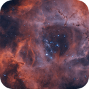 NGC 2244 Rosette Nebula,                                Kathy Walker