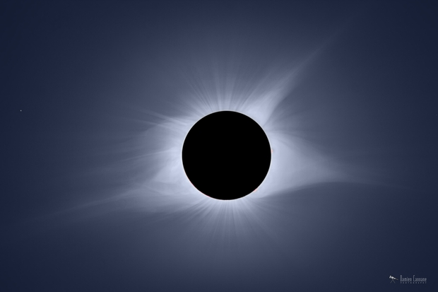 Totality!,                                Damien Cannane
