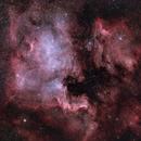 The North America Nebula and the Pelican Nebula,                                Marta Seidler