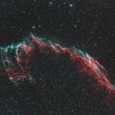 NGC 6992 Western Veil,                                Tim Trentadue