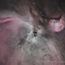 M42 - Trapezium Region,                                Jeremiah Roth
