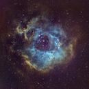 Rosette nebula NGC 2237,                                Sharky