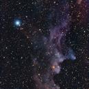 Witch Head Nebula IC 2118,                                Crash-dk