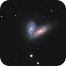 Siamese Twins galaxy. NGC4567&NGC4568 with M58,                                bawind Lin