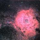 Sh2-275 Rosette Nebula,                                hbastro