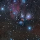 NGC2170 - The Angel Nebula,                                Markus Bauer