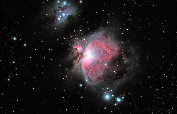 M42 - Orion Nebula,                                Paul Ricker