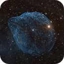 Dolphin Nebula / SH2-308 in HOO,                                KiwiAstro