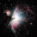 M42 The Orion Nebula,                                Jared Williams