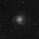 Messier 74,                                Stefan Westphal